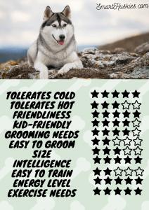 Ratings of Husky